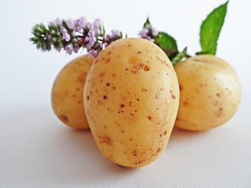 blog-dr.daniel-leal-neurobiologia-apetite-batata-branca