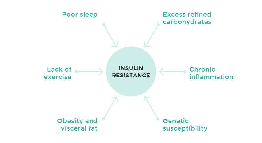 insulin-resistance-fig2-dr.Daniel Leal